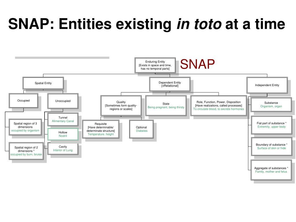 SNAP: Entities existing