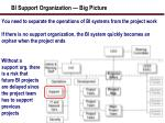 bi support organization big picture