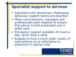 specialist support to services