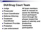 dui drug court team