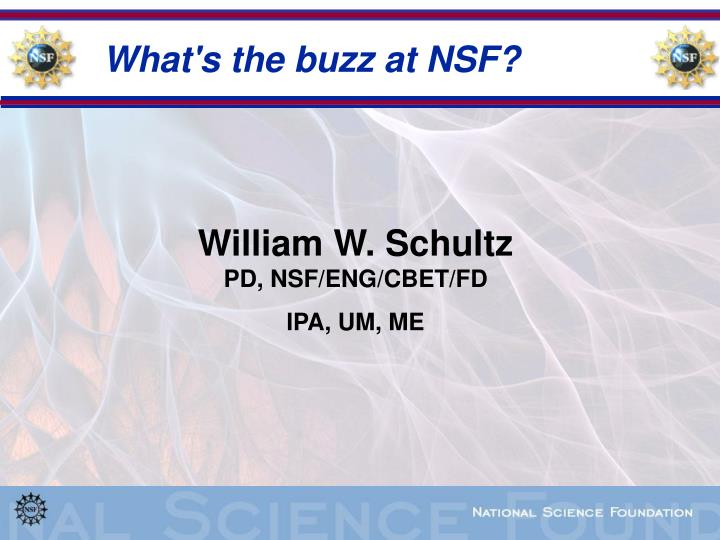 what s the buzz at nsf n.