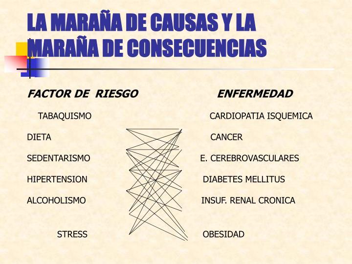 LA MARAÑA DE CAUSAS Y LA MARAÑA DE CONSECUENCIAS