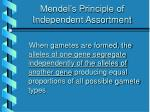 mendel s principle of independent assortment