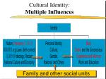cultural identity multiple influences