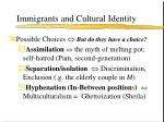 immigrants and cultural identity
