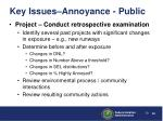 key issues annoyance public30