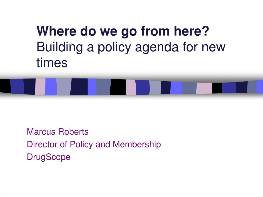 where do we go from here building a policy agenda for new times l.
