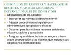 obligacion de respetar y hacer que se respeten y aplicar las normas internacionales de ddhh y dih