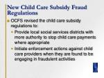 new child care subsidy fraud regulations