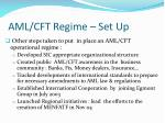 aml cft regime set up