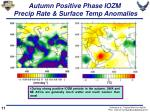 autumn positive phase iozm precip rate surface temp anomalies
