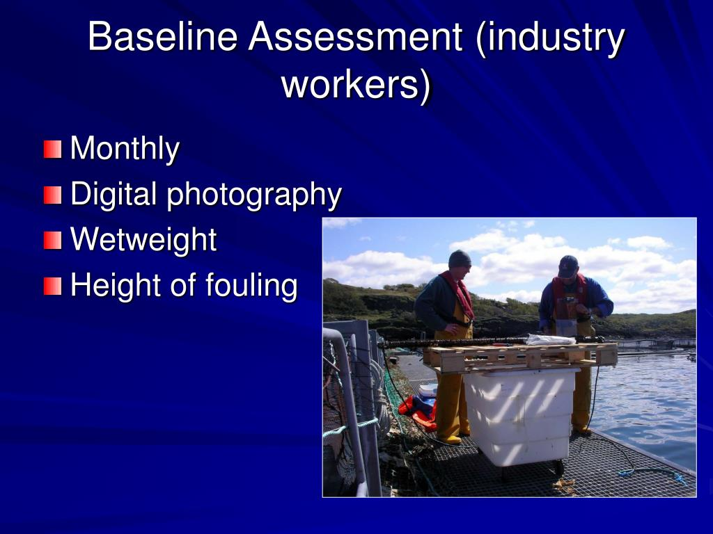 Baseline Assessment (industry workers)