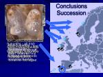 conclusions succession