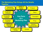 the marketing plan brings all the details together