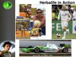 herbalife in action