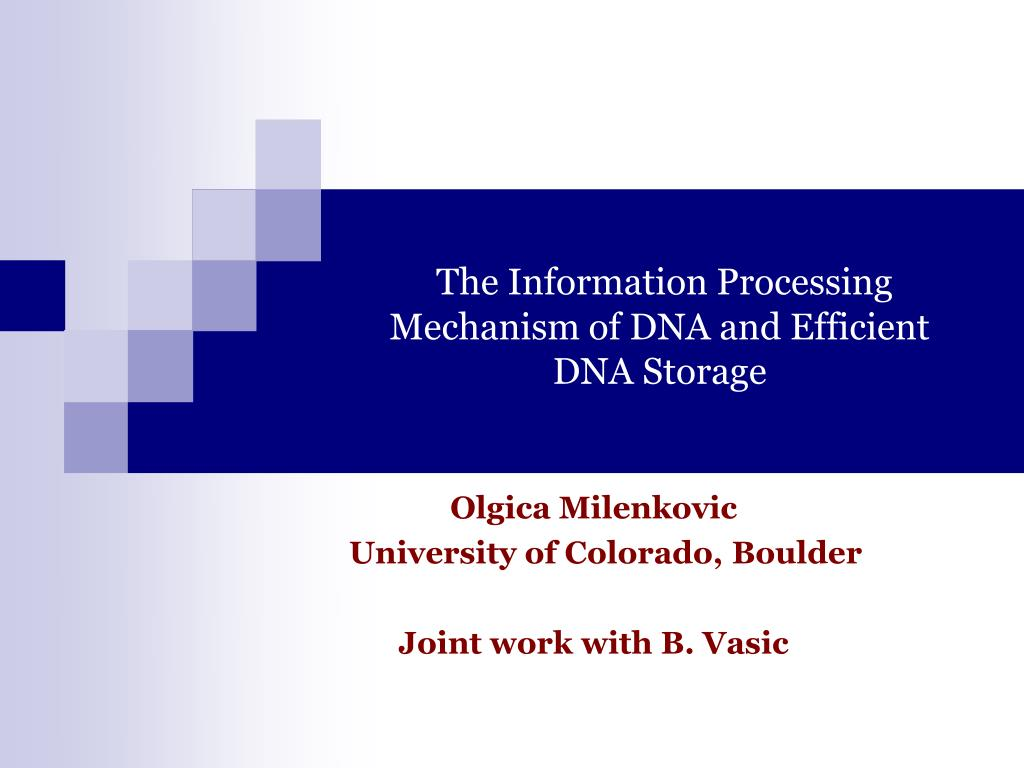 the information processing mechanism of dna and efficient dna storage l.
