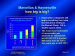 marcellus haynesville how big is big