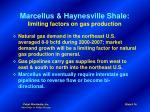 marcellus haynesville shale limiting factors on gas production