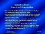marcellus shale impact on ngl production