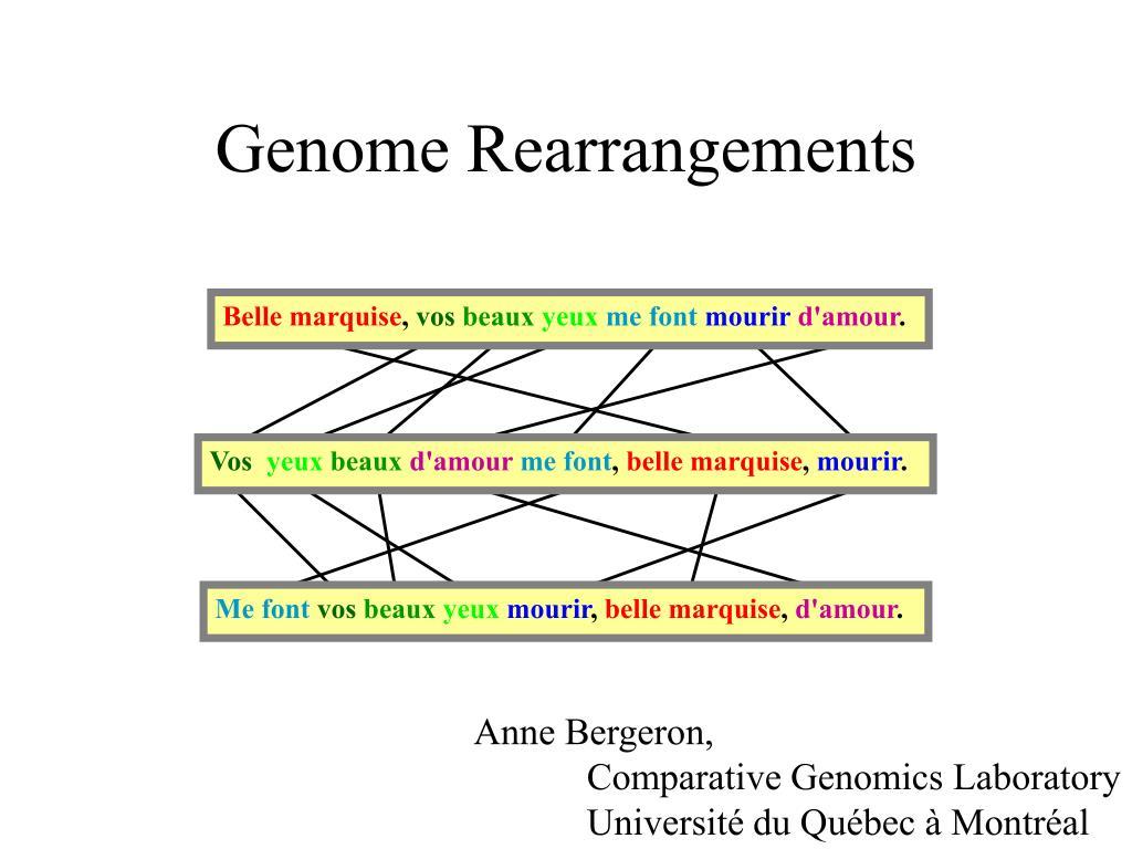 genome rearrangements l.