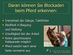 daran k nnen sie blockaden beim pferd erkennen