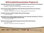 wgi funded demonstration projects 1