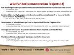 wgi funded demonstration projects 2