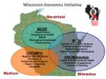 wisconsin genomics initiative