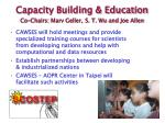 capacity building education co chairs marv geller s t wu and joe allen