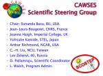 cawses scientific steering group