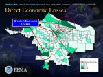 direct economic losses