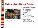 undergraduate nursing program