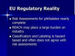 eu regulatory reality