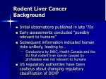 rodent liver cancer background