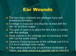 ear wounds