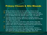 primary closure bite wounds