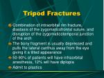 tripod fractures