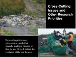 cross cutting issues and other research priorities