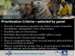 prioritization criteria selected by panel