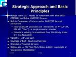 strategic approach and basic principles