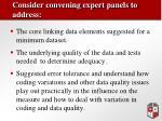 consider convening expert panels to address