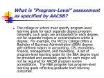 what is program level assessment as specified by aacsb