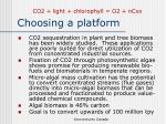 choosing a platform