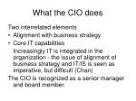 what the cio does