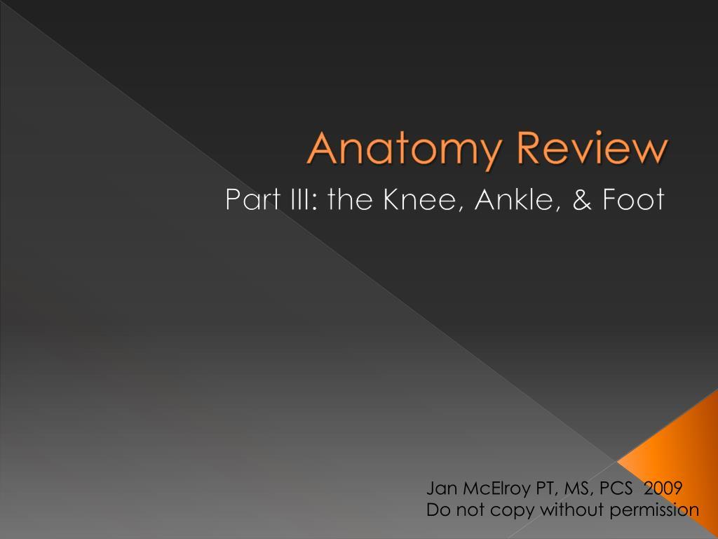 anatomy review l.