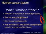 neuromuscular system
