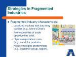strategies in fragmented industries