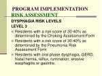 program implementation risk assessment88