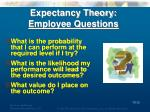 expectancy theory employee questions