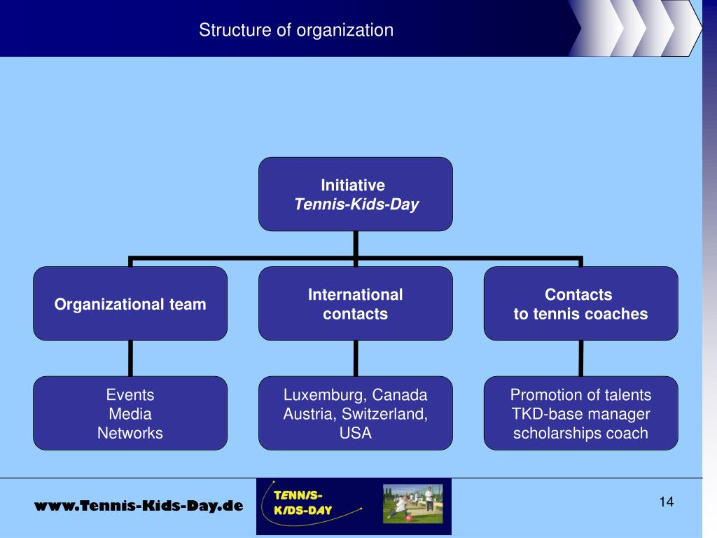 Structure of organization